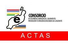 ACTA DE REALIZACION DE LA QUINTA PRUEBA RECONOCIMIENTO MEDICO DE LA FASE DE OPOSICION DEL PROCESO SELECTIVO PARA LA PROVISION EN PROPIEDAD DE CINCO PLAZAS DE BOMBERO CONDUCTOR DEL CONSORCIO DE SEGURIDAD Y EMERGENCIAS DE LANZAROTE